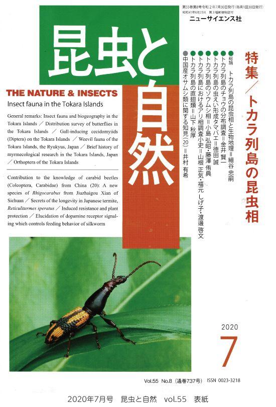 「昆虫と自然」7月号に太田広人准教授のカイコ研究の記事が掲載